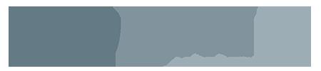 Navlandis logo